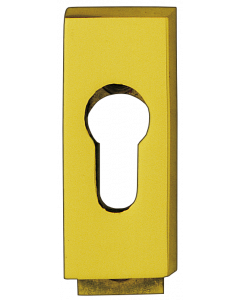 Bisschop veiligheidscylinderslplaat 6mm 68x30mm messing