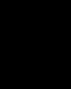 Vola handdoekring muurmontage Ø32mm wit